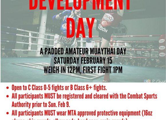 MNSW Development Day